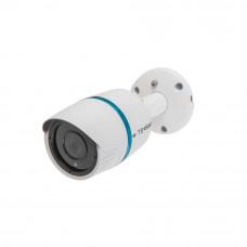 IP-видеокамера Tecsar Beta IPW-4M20F-poe